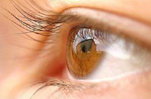 Ωχρά Κηλίδα - Οφθαλμίατρος Θεσσαλονίκη - Dr Καραμήτσος Αθανάσιος